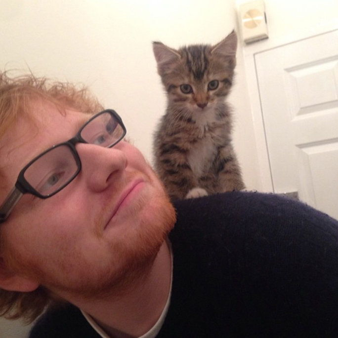 quando he posed with his adorable kitten, Graham