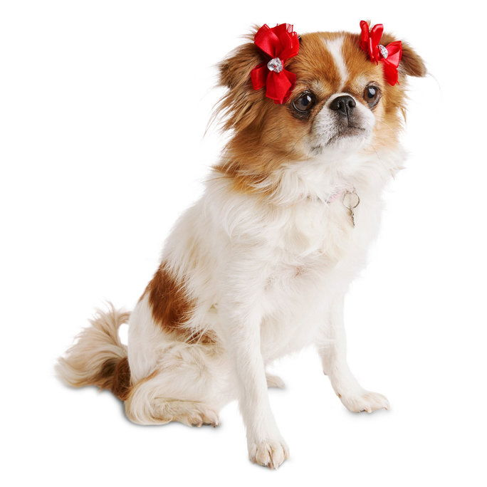 Merah Satin Organza Dog Hair Bows