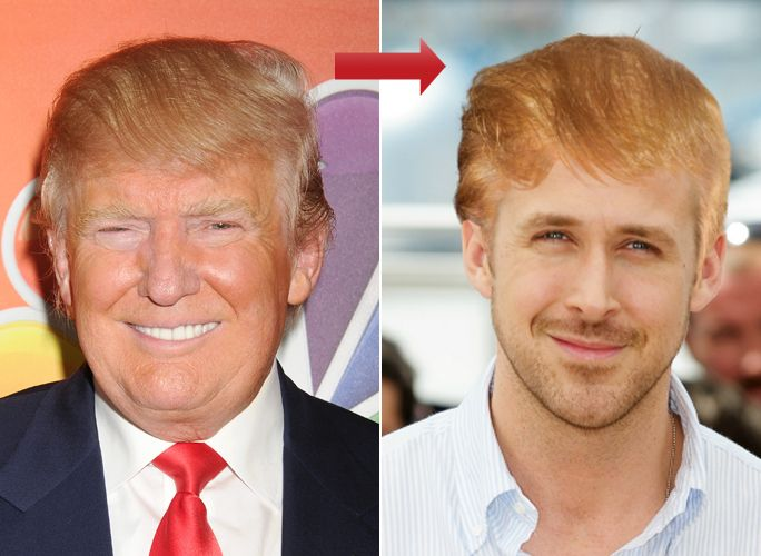 Donald Trump Hair Try On